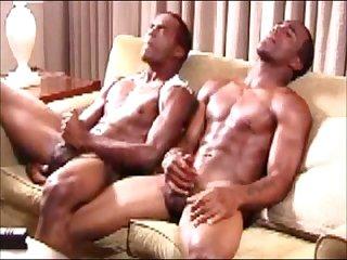2548 Twins stripper