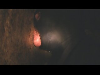 Thick Gloryhole Cock Deepthroat for Fun!