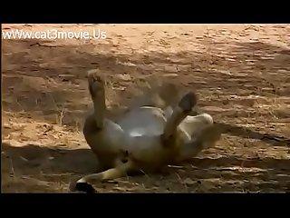 Emanuelle na África (completo)