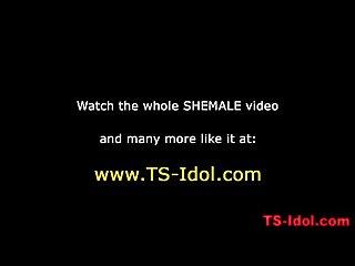Shemaleidol 10