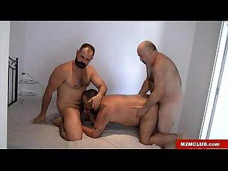 Hung bears fucking