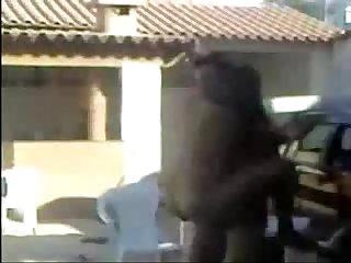 Meus vizinhos fudendo na piscina putariatubetv period blogspot period com