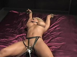 Shyla stylez orgasms in bed