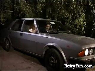 Hairy ass videos