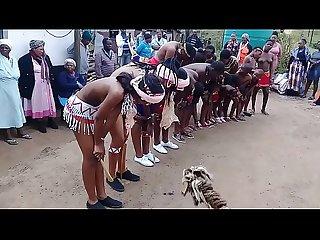 Zulu Umhlonyane Mid-ilovo